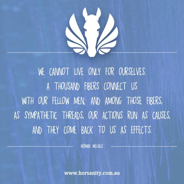 Horsanity-quote6