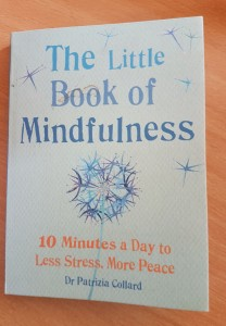 littel book of mindfulness